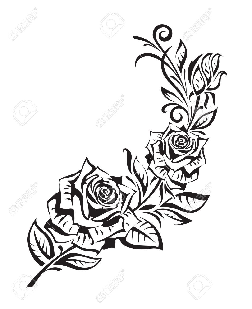 25657895 black rosebush on white background stock vector rose tattoo 1063 1300. Black Bedroom Furniture Sets. Home Design Ideas
