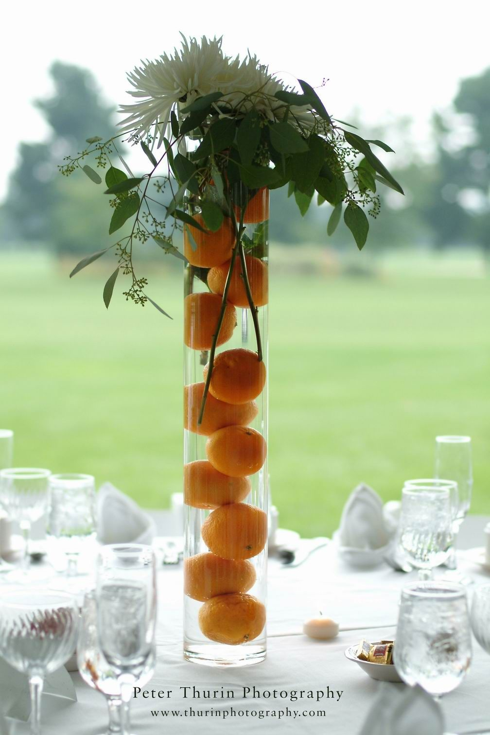 Large cylinder vase with water oranges and spider