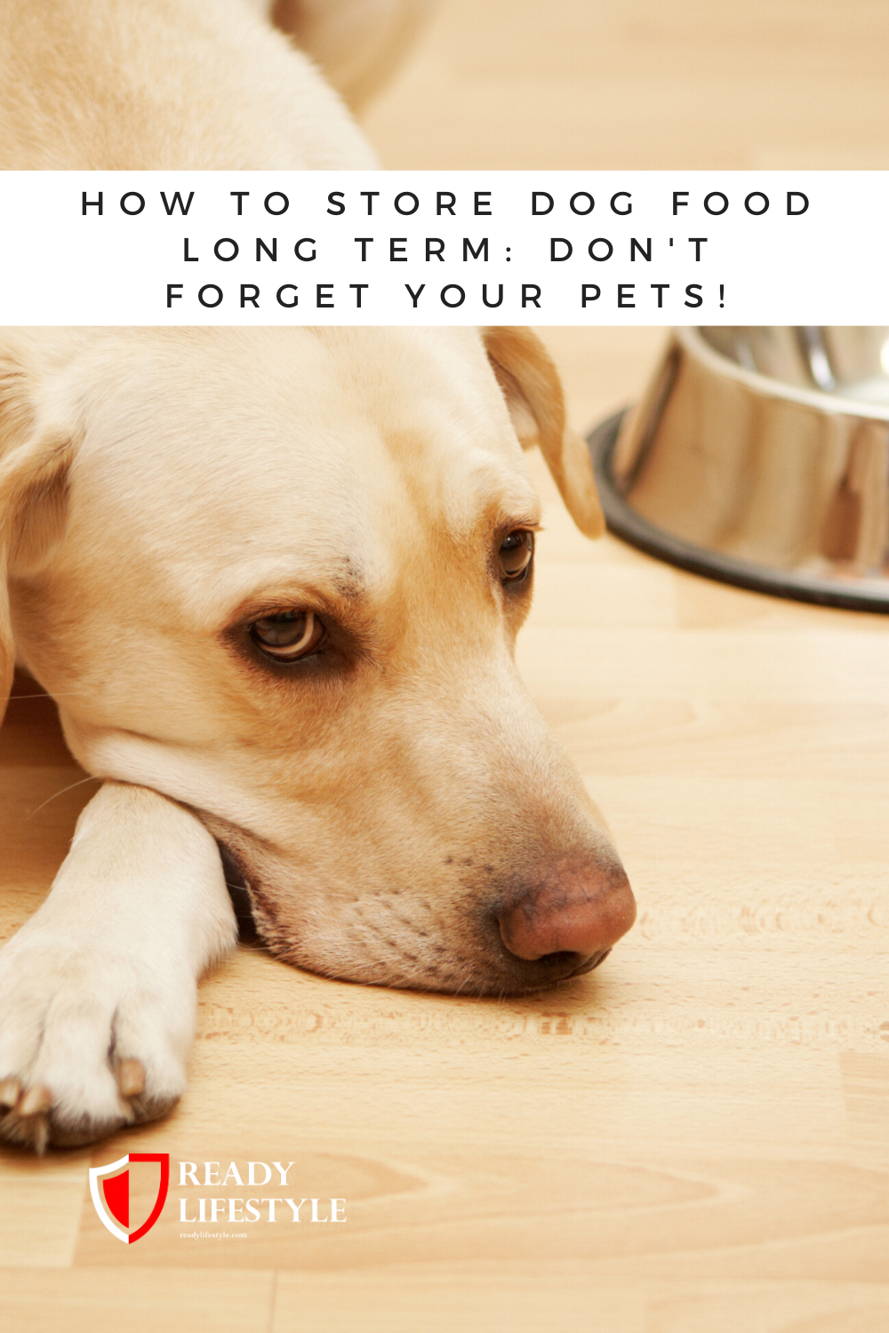 How To Store Dog Food Long Term Don't Your Pets