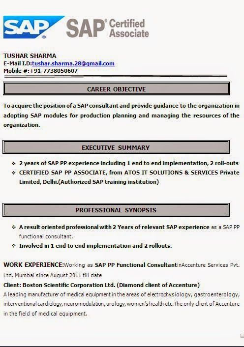 curriculum vitae sample for students sample template