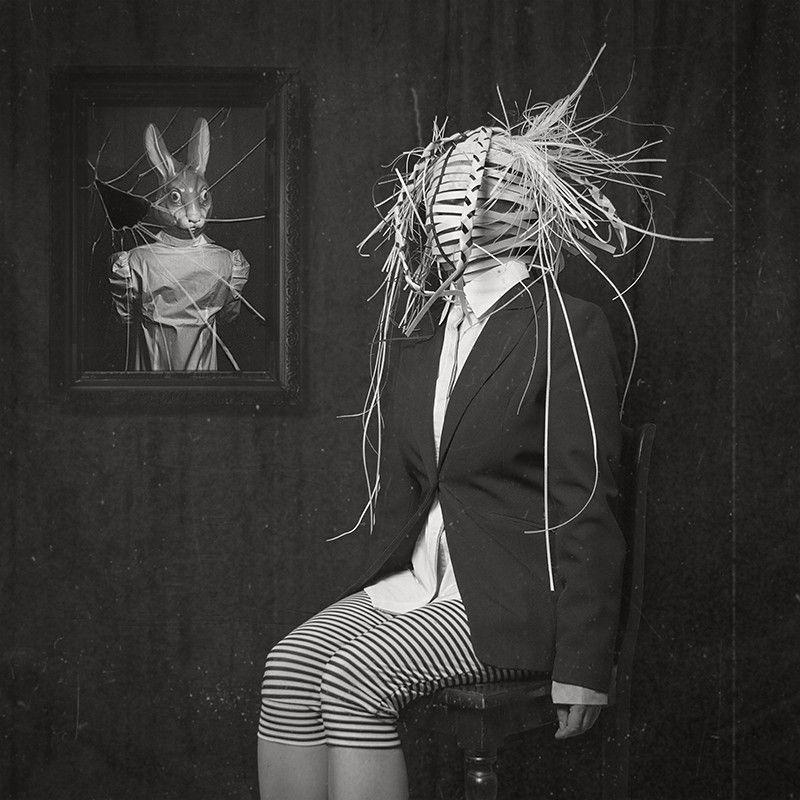 """""""short-living"""" by Lotta van Droom"""