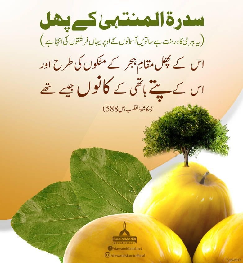Fruit Of Sidra Tul Muntaha In 2021 Islamic Messages Fruit Urdu Quotes