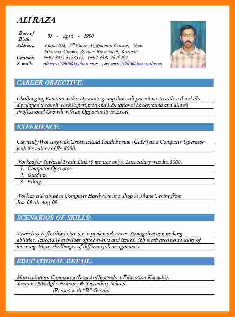 5 Cv Formats 2015 Word Theorynpractice Best 5 Cv Formats 2015 Word Theorynpractice Best Resume For Job Resume Template Resume Template Word Resume Template