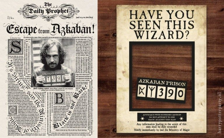 This is an image of Have You Seen This Wizard Printable with sign