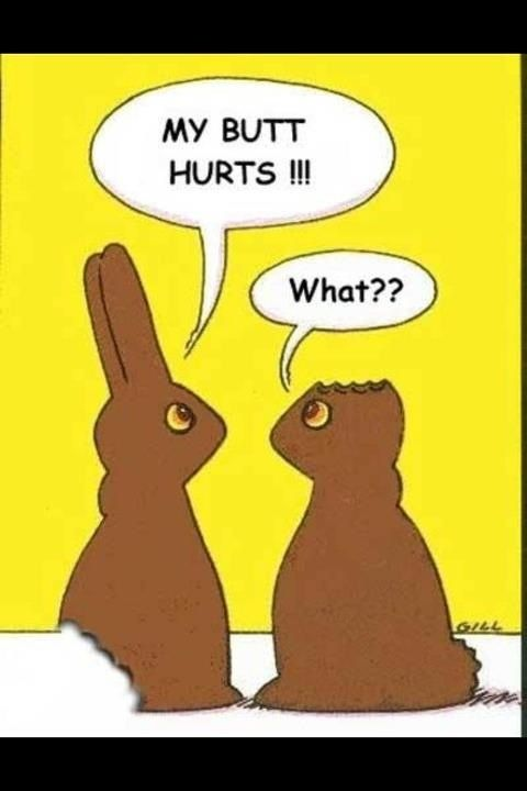 Butt Eaten Chocolate Easter Bunny Funny Stuff Funny Easter