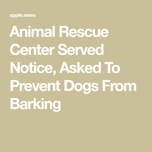 Animal Rescue Center Served Notice, Asked To Prevent Dogs From Barking — Raise Vegan #animalrescue