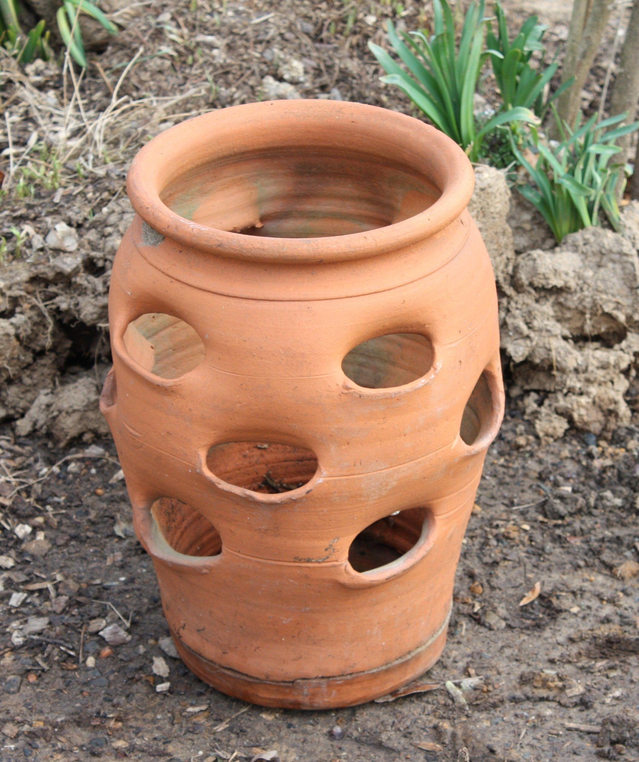 Strawberry Pot Strawberry Planters Strawberry Pots Planter Pots