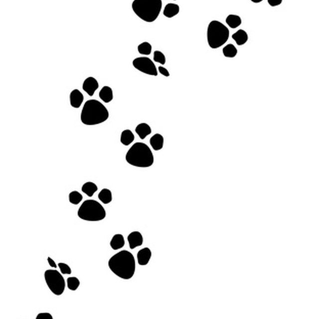 How to Make a Paw Print With the Keyboard
