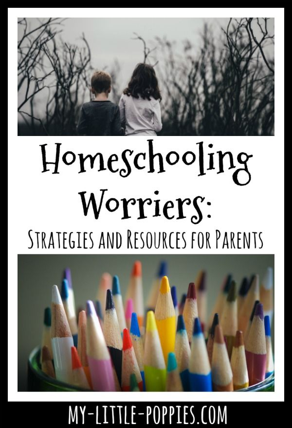 Homeschooling Worriers: Strategies and Resources for ...