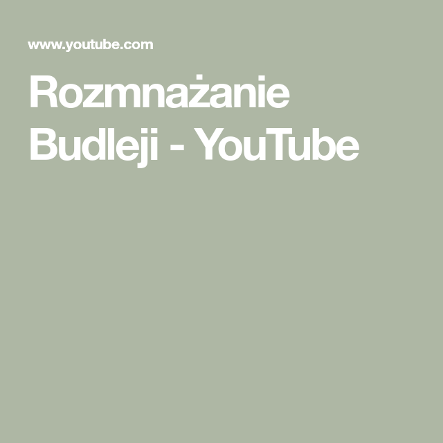 Rozmnazanie Budleji Youtube Youtube Incoming Call Screenshot Incoming Call