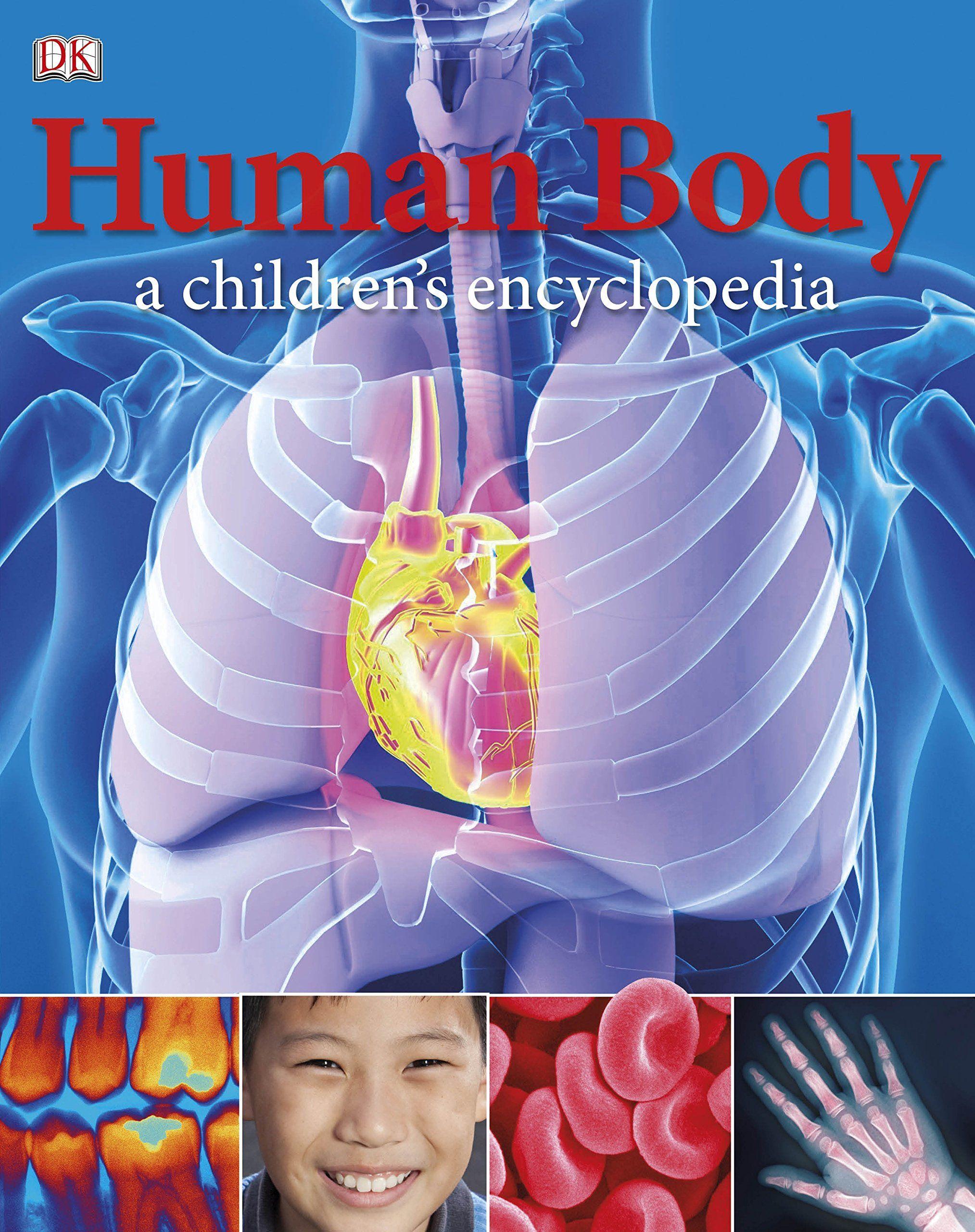 Human Body A Children S Encyclopedia Dk Reference