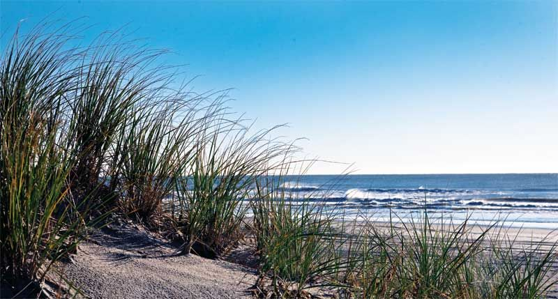 Avalon Nj Beach Hotel Affordable Jersey S Packages And Specials