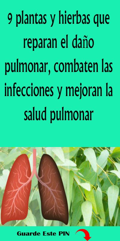 Remedios caseros para infecciones pulmonares