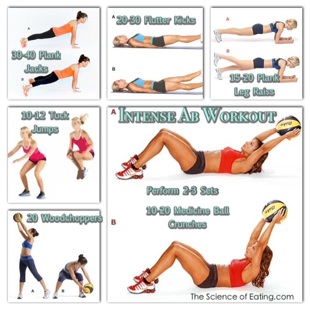 The core consists of far more than just the abdominal ...