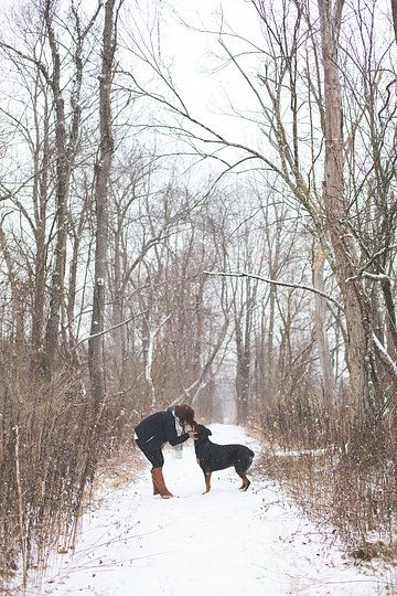pets and their owners  Photo from Maren  Zari collection by Jennifer Manzi Photography LLC