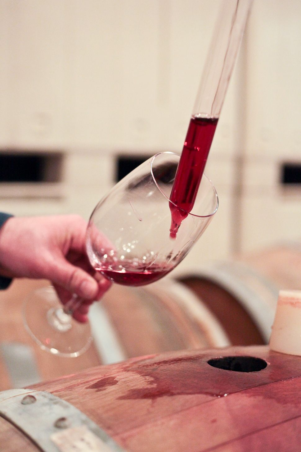 Barrel Tasting One Of The Final Steps Of The Winemaking Process With Images Wine Thief Wine Winemaking