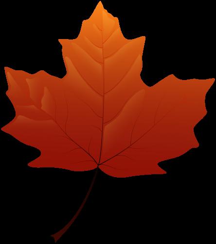 autumn leaf png clip art adnan pinterest clip art and leaves rh pinterest com autumn leaves clipart pinterest clipart fall leaves border