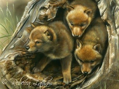 Puppy Play, 12in x 9in, watercolor on board, ©Rebecca Latham - Coyote Puppies #art #painting #realism #watercolor #coyote
