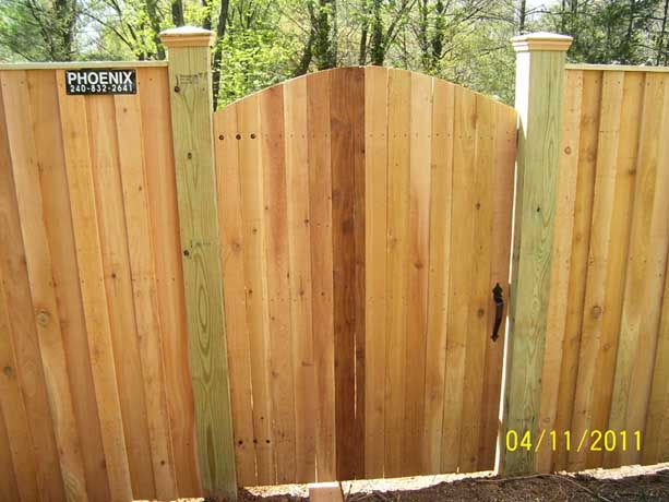 Privacy Fence Gate With Arched Top Front View Built