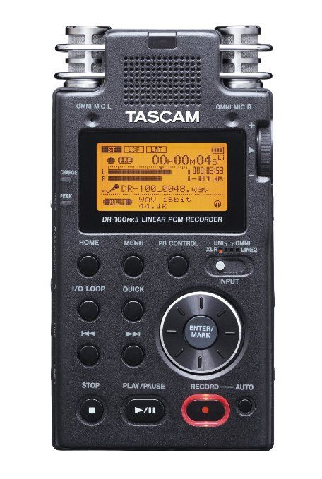 Amazon.com : TASCAM DR-100mkII 2-Channel Portable Digital Recorder : Portable Studio Recorders : Musical Instruments