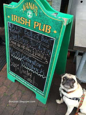 An irish pub for an irish pug. I think he wants the special!