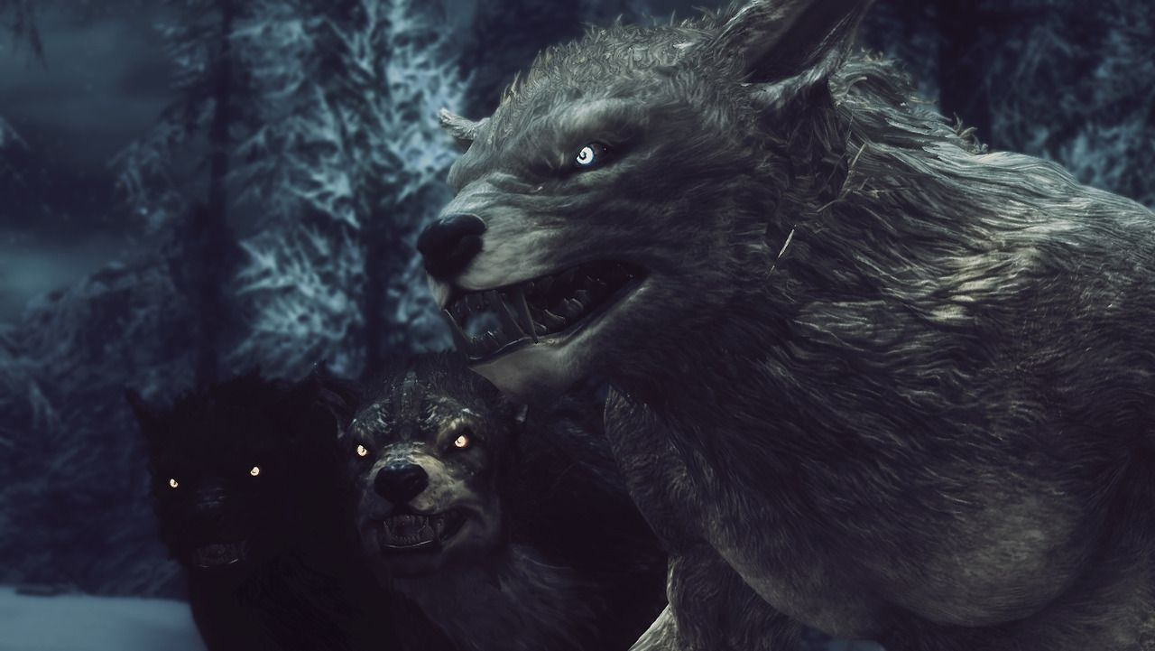 Skyrim Werewolf Skins black and white images...