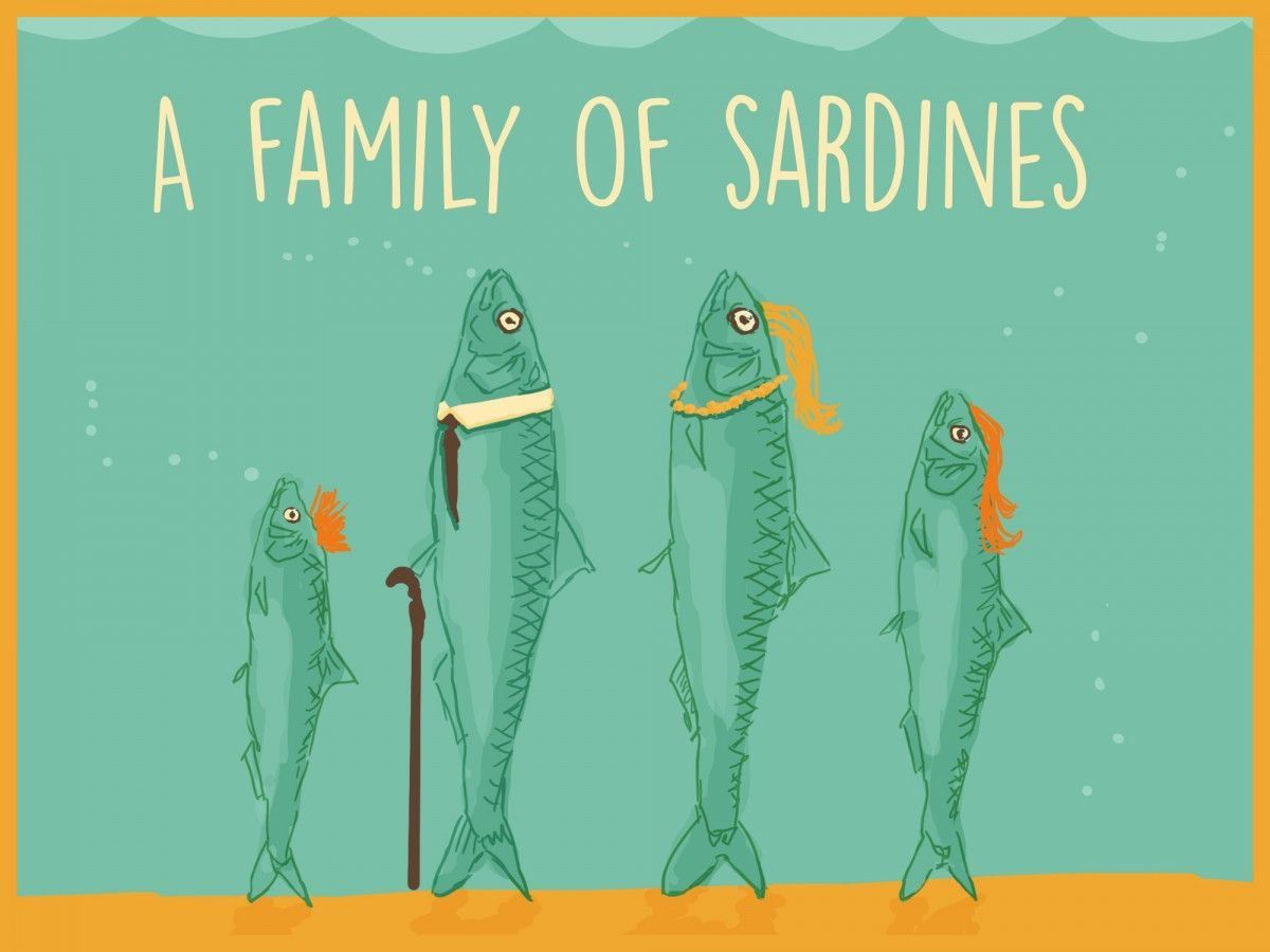 A Family Of Sardines With Images