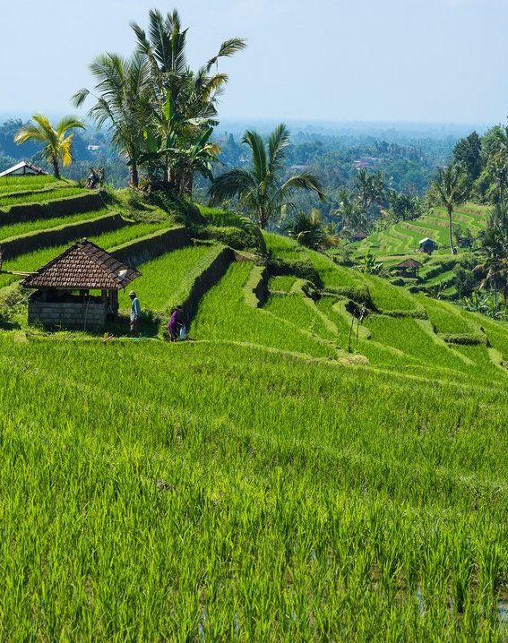 The Bali Getaway You Should Plan Right Now