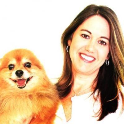 Pet Sitting Dog Walking Dog Walking Pet Health Insurance Pet Sitting