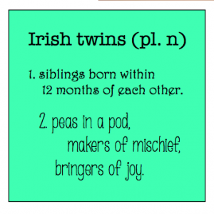 Best 25 Irish Twins Quotes Ideas On Pinterest Twin