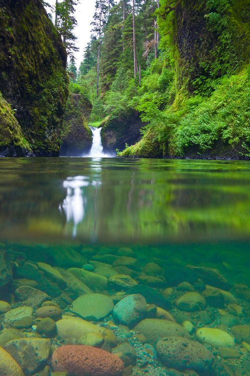 Split Underwater And Above Water View Of Punchbowl Falls Eagle Creek Along The Trail Columbia River Gorge National Scenic Area Oregon