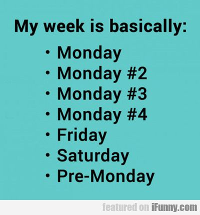 My Week Basically Funny Quotes Quotes Words
