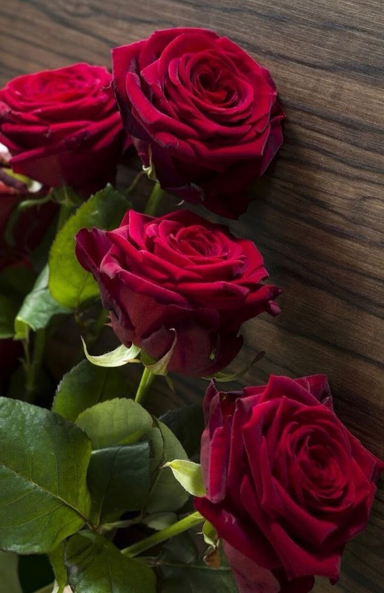 Pin By Samantha Engles On Rose Red Flower Bouquet Red Flowers Flowers