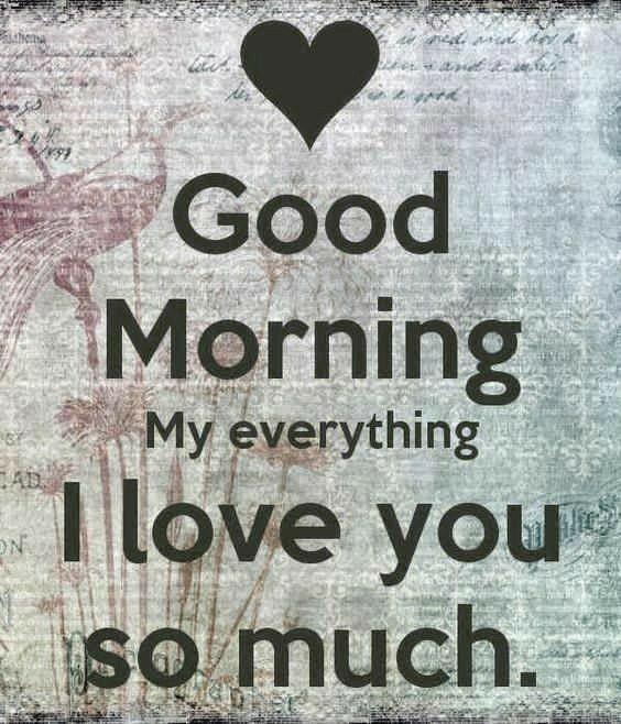 Guten morgen Sonnenschein. Ich will dich küssen. Intensiv und unverschämt. 🐇