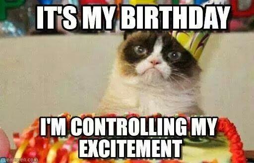 Funny It S My Birthday Meme : So it s my cat s birthday funny