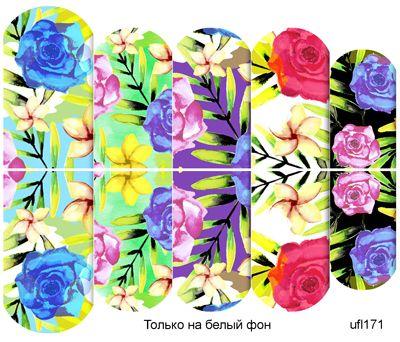 Слайдер-дизайн премиум, Цветы ufl171 - 1
