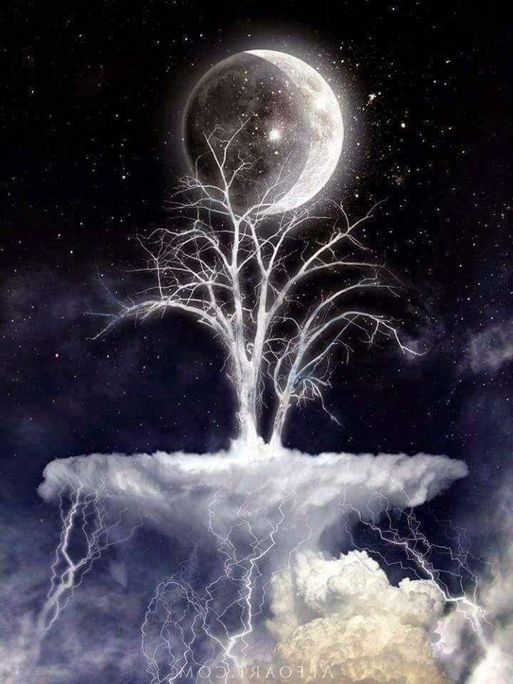 Moon Lovers in 2019 | Moon art, Beautiful moon, Moon