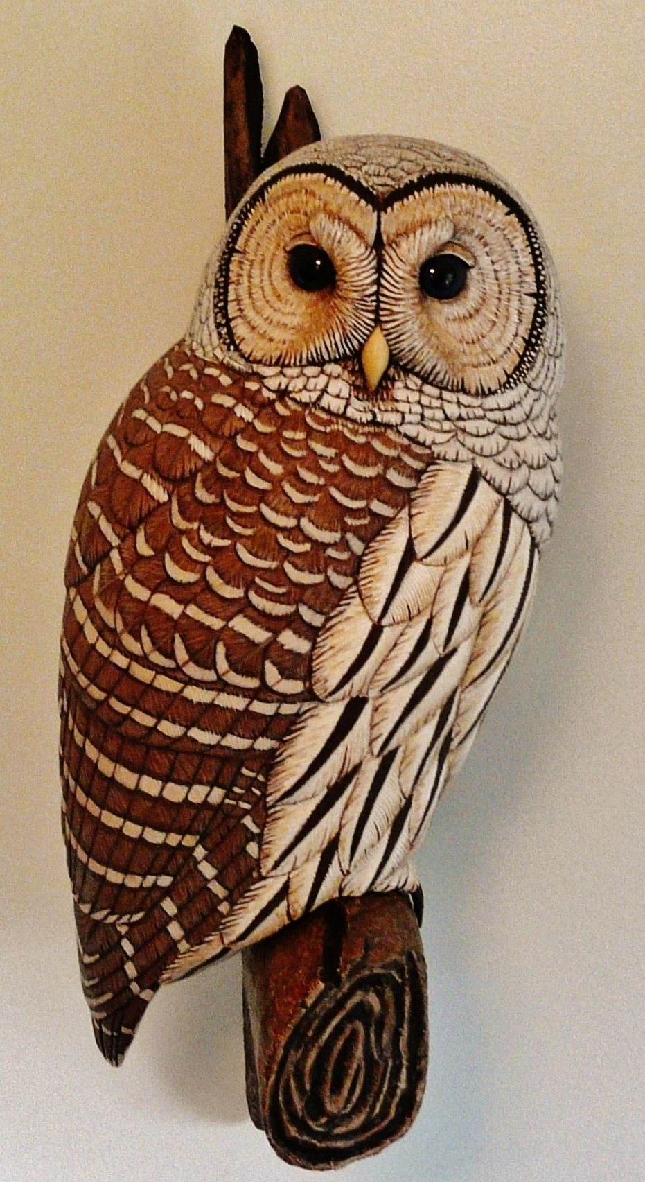 Barred owl life size wood carving by tim mceachern