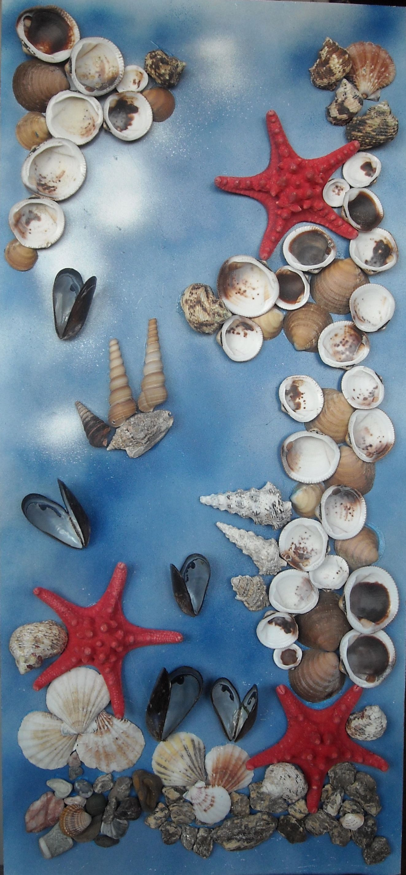 Морске висине Sugar cookie, Sea shells, Food