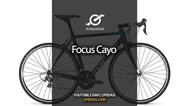 Focus Cayo Youtube Https M Youtube Com Watch Cfplatform
