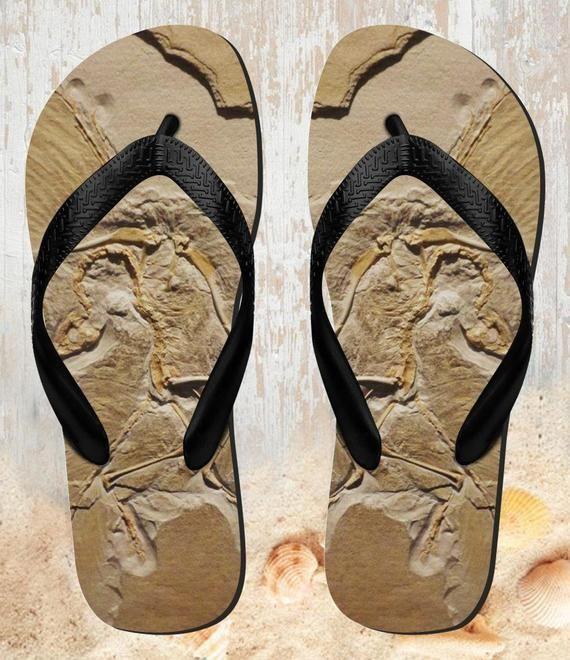 Dinosaur Fossil Beach Slippers Sandals Flip Flops #dinosaurfossils