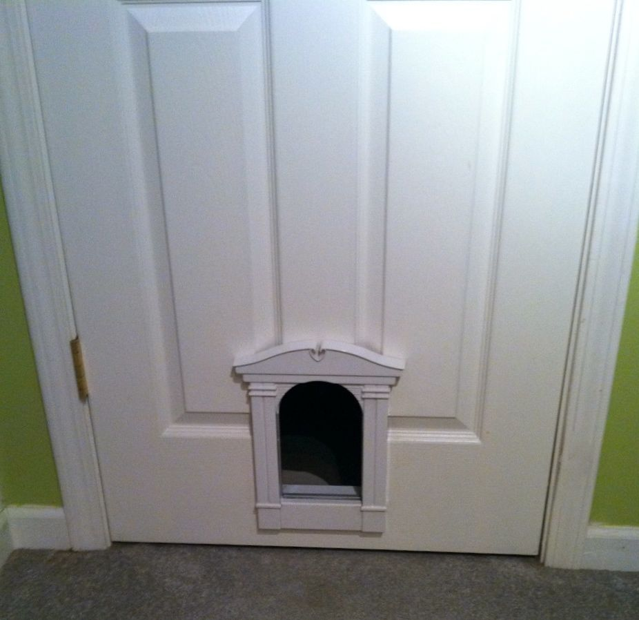 Cat Door Into Laundry Room. Clean Square Though