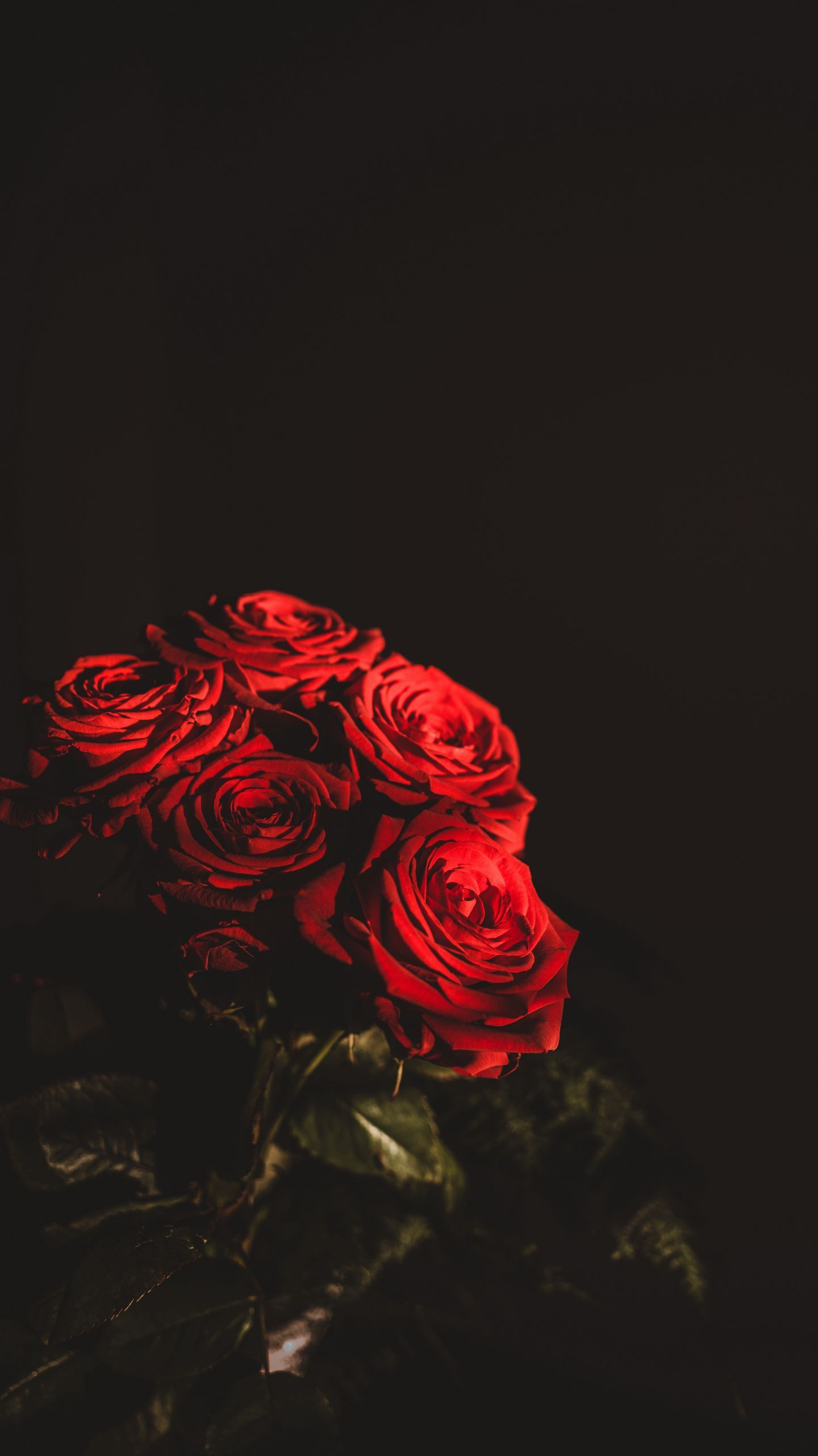 See My Collection Of Pretty Iphone And Android Flower Wallpapers And Background Images In Ultra H Red Flower Wallpaper Flower Wallpaper Flowers Dark Background