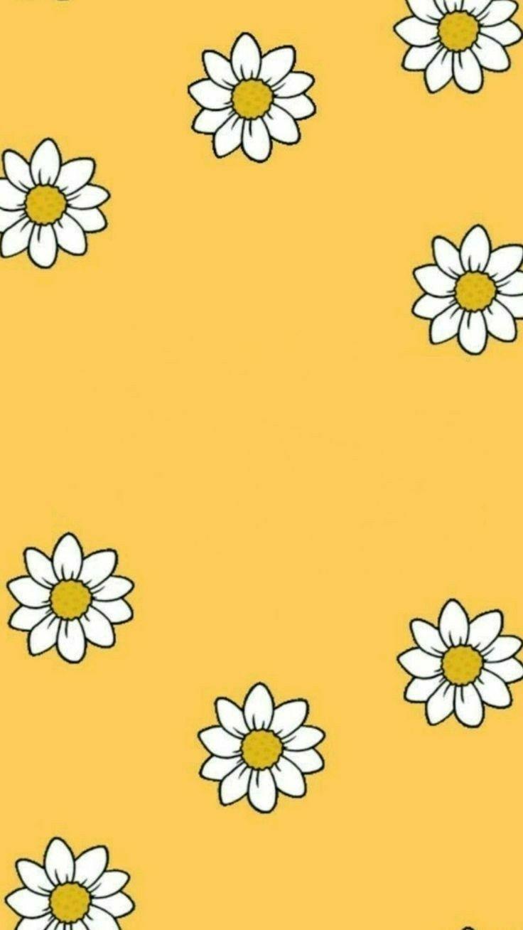 Pin By Virginia Delgado On Wallpapers Iphone Wallpaper Yellow Yellow Wallpaper Iphone Wallpaper Vsco