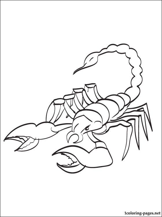 Scorpion Coloring Page To Print Out Pages