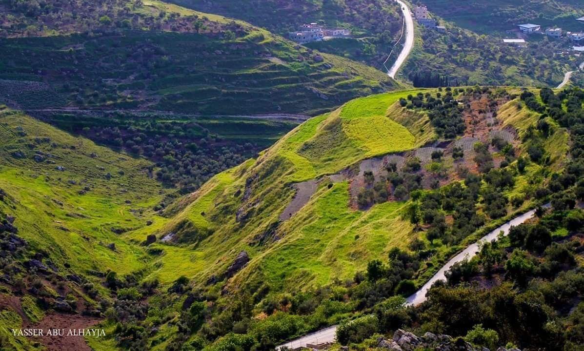 صورة جمال الطبيعة من عراق بورين في نابلس Palestine Natural Landmarks Travel