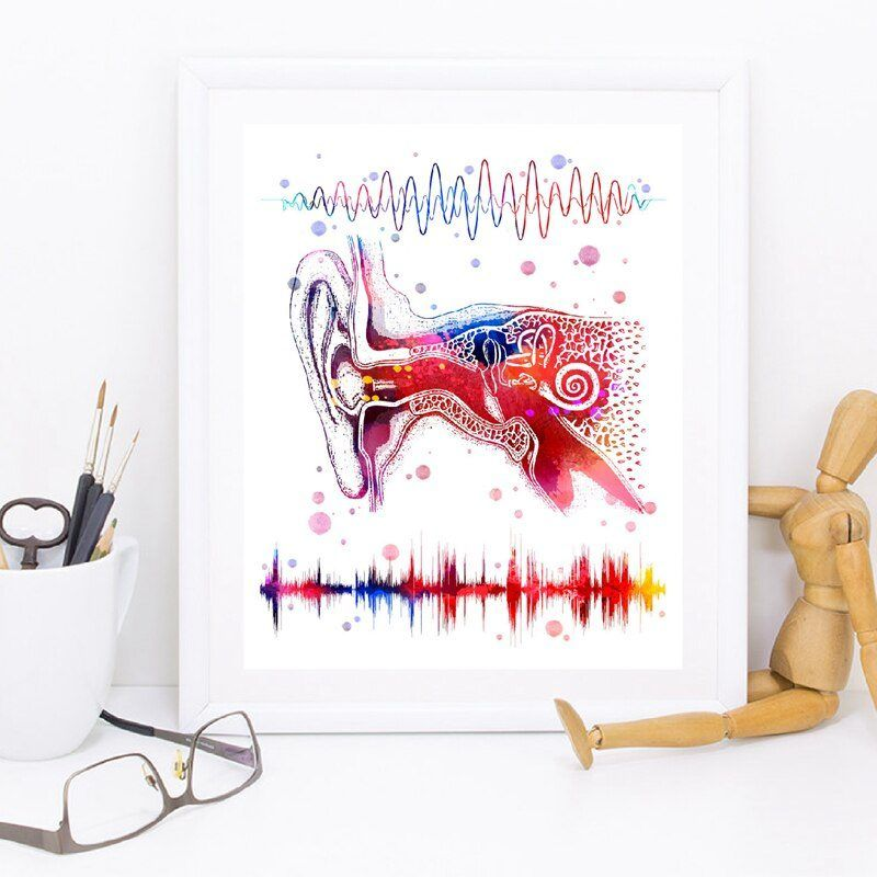 Ear System Medical Anatomy Wall Art Canvas Poster Prints Binaural Hearing Art Audio Wave Painting Clinic Doctor Office Decor #doctoroffice