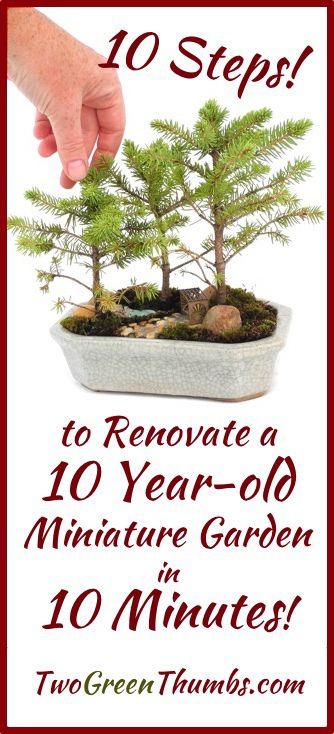 Miniatúrne Záhrada Renovácia by TwoGreenThumbs.com