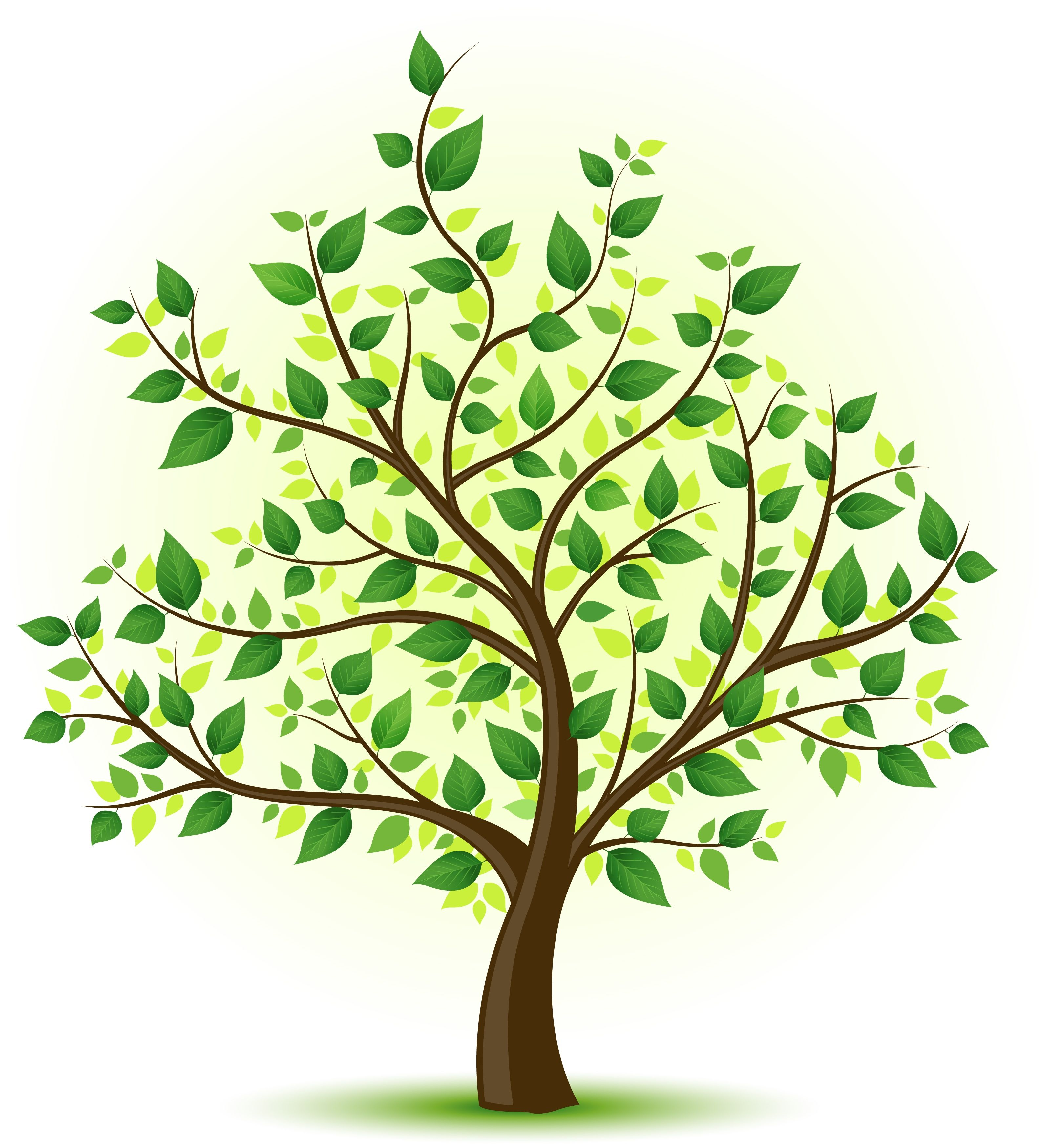 The gallery for --> Family Tree Drawing | Tree Art | Pinterest ...