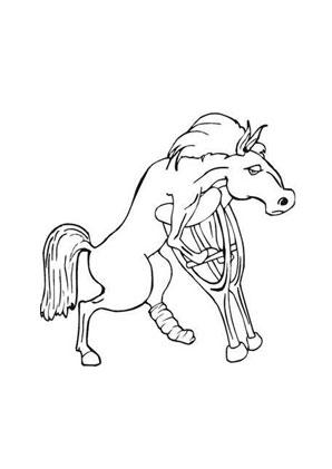 Ausmalbild Pferd Auf Krucken Zum Ausmalen Ausmalbilder Ausmalbilderpferde Malvorlagen Ausmalen S Ausmalbilder Pferde Ausmalbilder Tiere Ausmalen